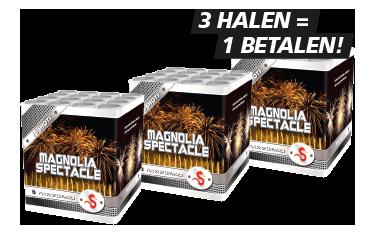 Magnolia Spectacle (3 cakes) - Grootvuurwerk.nl