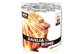 Vuurwerktoppers Dahlia Bomb